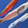 意外と知らない鯉のぼりの洗濯・お手入れ・保管方法